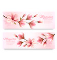 nature spring banners with beautiful magnolia vector image vector image