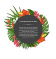 tropical plantleaves and flowers vector image vector image