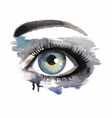 Eye on grunge background vector image