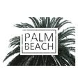palm tree print vector image