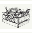 wooden crate full of organic food isolated vector image