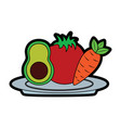avocado tomato and carrot food in plate vector image