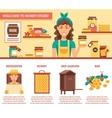 Beekeeping Honey Infographics vector image vector image