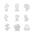 cactus icon set vector image