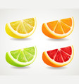 citrus fresh fruits set orange lime grapefruit vector image