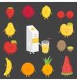 Fruit set Strawberry pomegranate lemon cherry vector image vector image