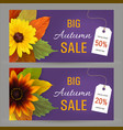 set autumn horizontal banners for sale vector image vector image