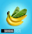 banana realistic poster vector image
