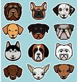 Dogs collection vector image vector image