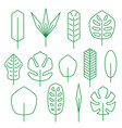 minimalistic linear palm leaf set vector image