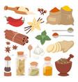 seasoning food herbs natural ingredient vector image vector image