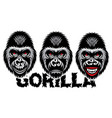 a set different gorilla color vector image vector image