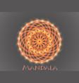 mandala round ornament pattern vector image vector image