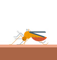 Mosquito bites skin vector image vector image
