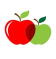 Two appels vector image vector image