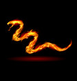 fire snake on black for design vector image