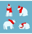 Cartoon Cute Polar Bear Animal vector image vector image