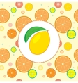 Citrus Design Template vector image vector image