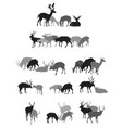 groups of isolated deers silhouettes vector image vector image