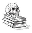 handmade sketch death concept human skull on old vector image vector image