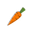 icon carrots vector image vector image