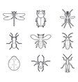 Insects mono line icons set vector image vector image