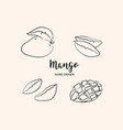 mango fruit drawing hand drawn mango vector image vector image