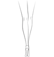 woman legs back view vector image