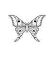 butterfly in doodle style vector image vector image