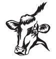 contour portrait black bull vector image vector image