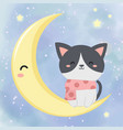 cute kitten with moon and stars vector image
