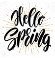 hello spring text lettering phrase for poster vector image