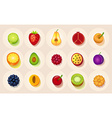 Icons of fruit in a circle vector image