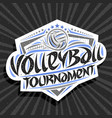 logo for volleyball tournament vector image