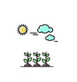 sprouts under the sun icon vector image vector image