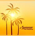 summer paradise holidays background with sunshine vector image