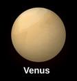 venus planet icon realistic style vector image vector image