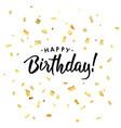 birthday1 vector image vector image