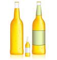 bottle beer low alcohol beverage vector image vector image