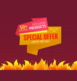 limited time only one day special offer discount vector image vector image