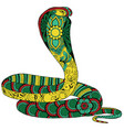 ornamented snake vector image vector image