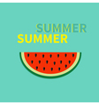 Watermelon slice seeds Flat design icon Summer vector image vector image