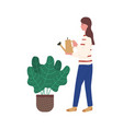 woman watering flowers from can plant in flowerpot vector image vector image