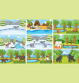 background scenes animals in wild vector image vector image