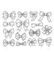 hand drawn bow fashion tie bows accessories vector image vector image