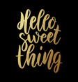 hello sweet thing lettering phrase on dark vector image