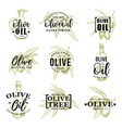 olive oil icons with leaves and bottle vector image vector image