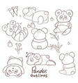 outlines pandas on a white background vector image vector image