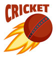 red fire ball cricket logo flat style vector image