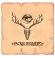 skull with horns and a magical eye elements in vector image vector image
